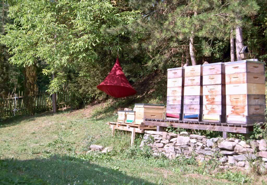 Das Reich der Bienen
