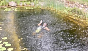 Tauchgang im Schwimmteich