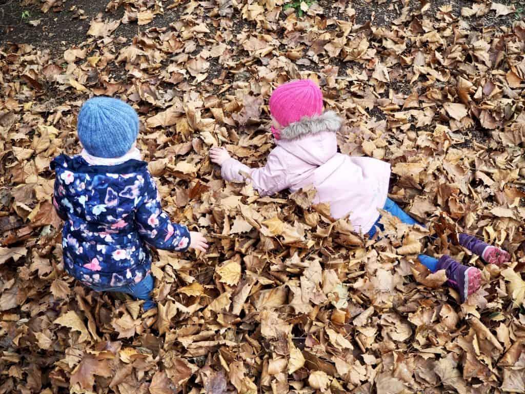 warm eingestrickt im Blätterhaufen