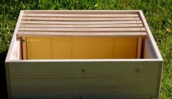 Bienenvölker vermehren