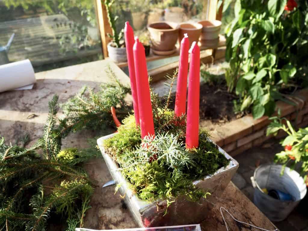 Nadelzweige auf Adventsgesteck