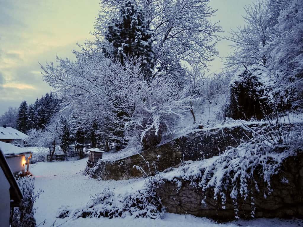 Bienenstock im Winter