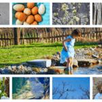 März-Fotos