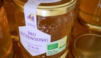 Umstieg zur Bio-Imkerei - Bio-Honig