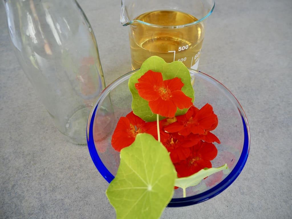 Zutaten für Blütenessig mit Kapuzinerkresse
