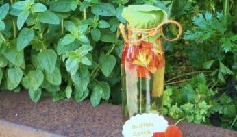 Blütenessig mit Kapuzinerkresse
