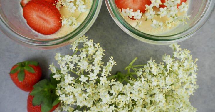 Holunderblüten-Panna-Cotta