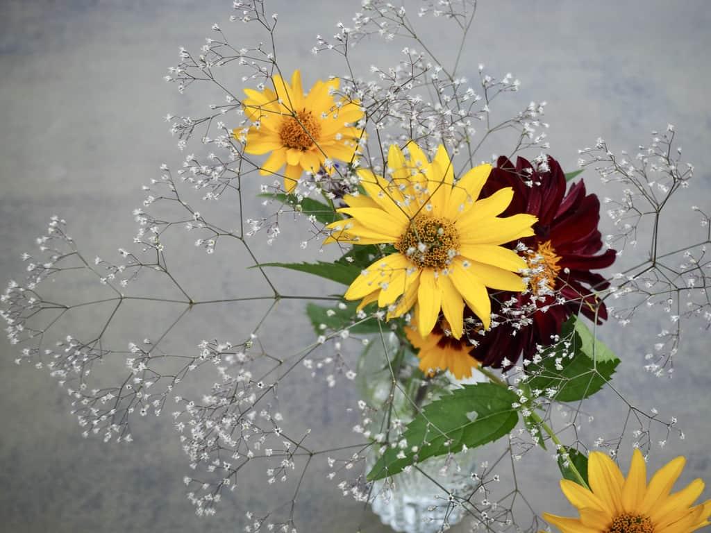 sommerlicher Blumenstrauß aus dem Garten