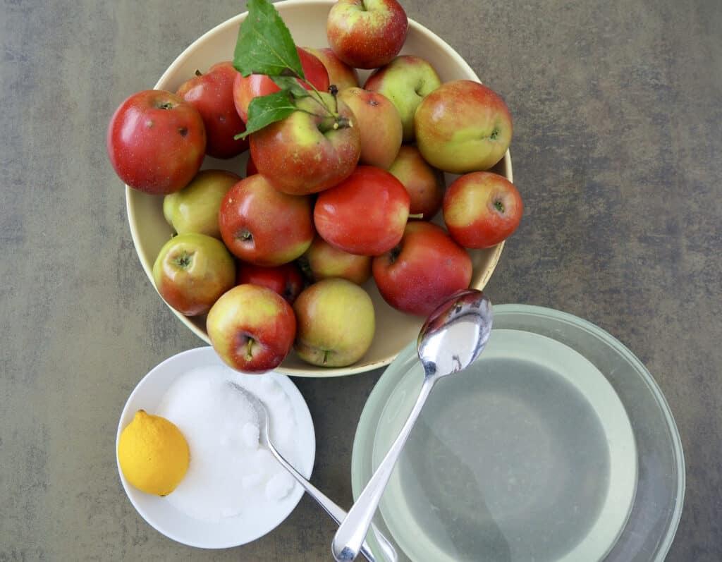 Zutaten für Apfelkompott
